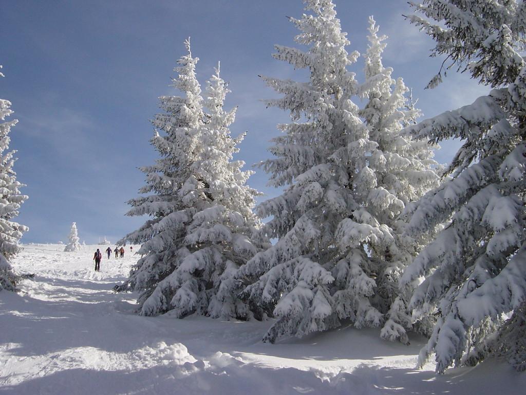 Schneeschuhtour MTB Mountainbike Tour beitune.de