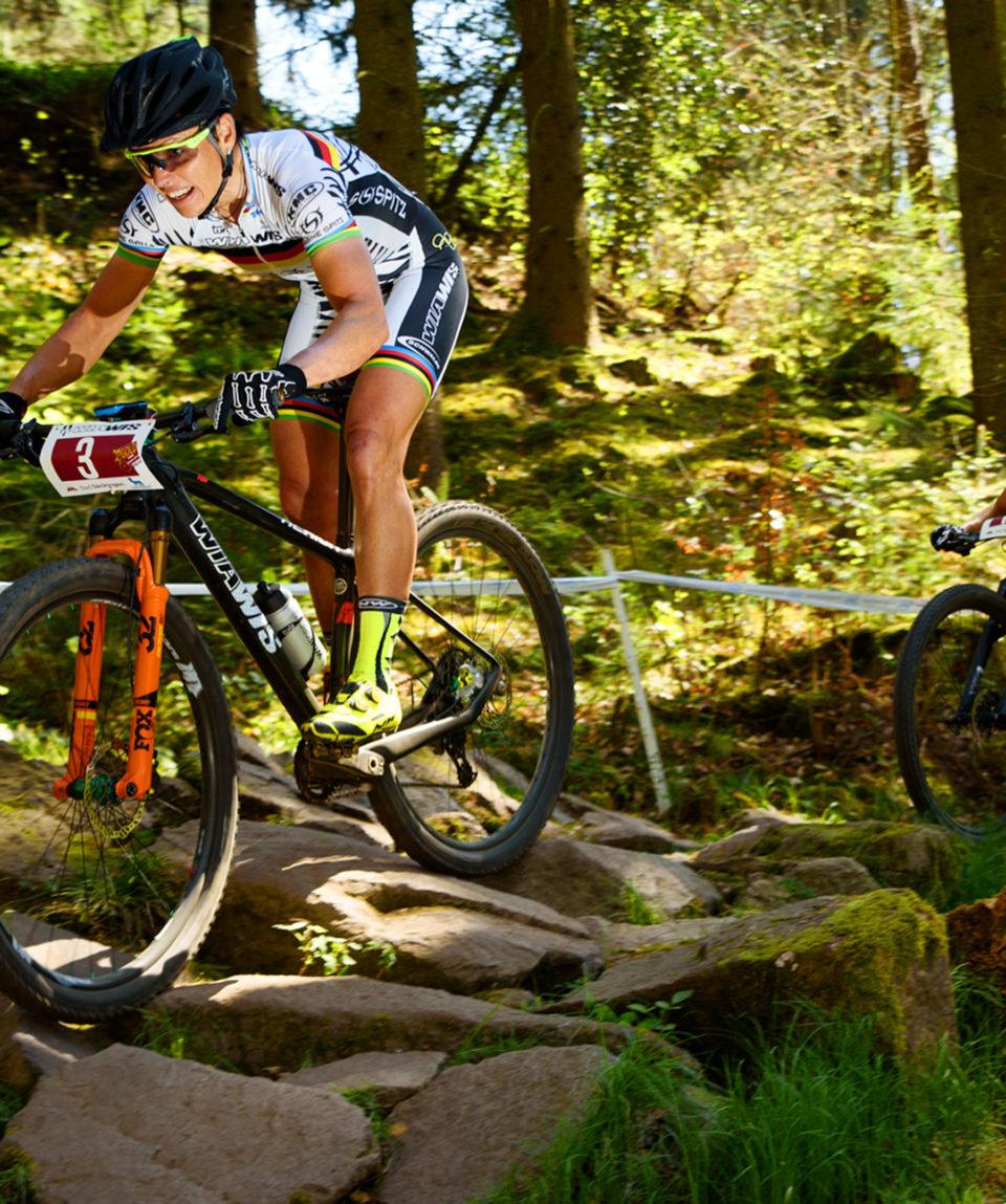 Mountainbike Preise und Angebote Übersicht der
