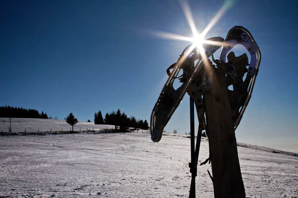 beitune Winterprogramm Schneeschuhtouren Schwarzwald