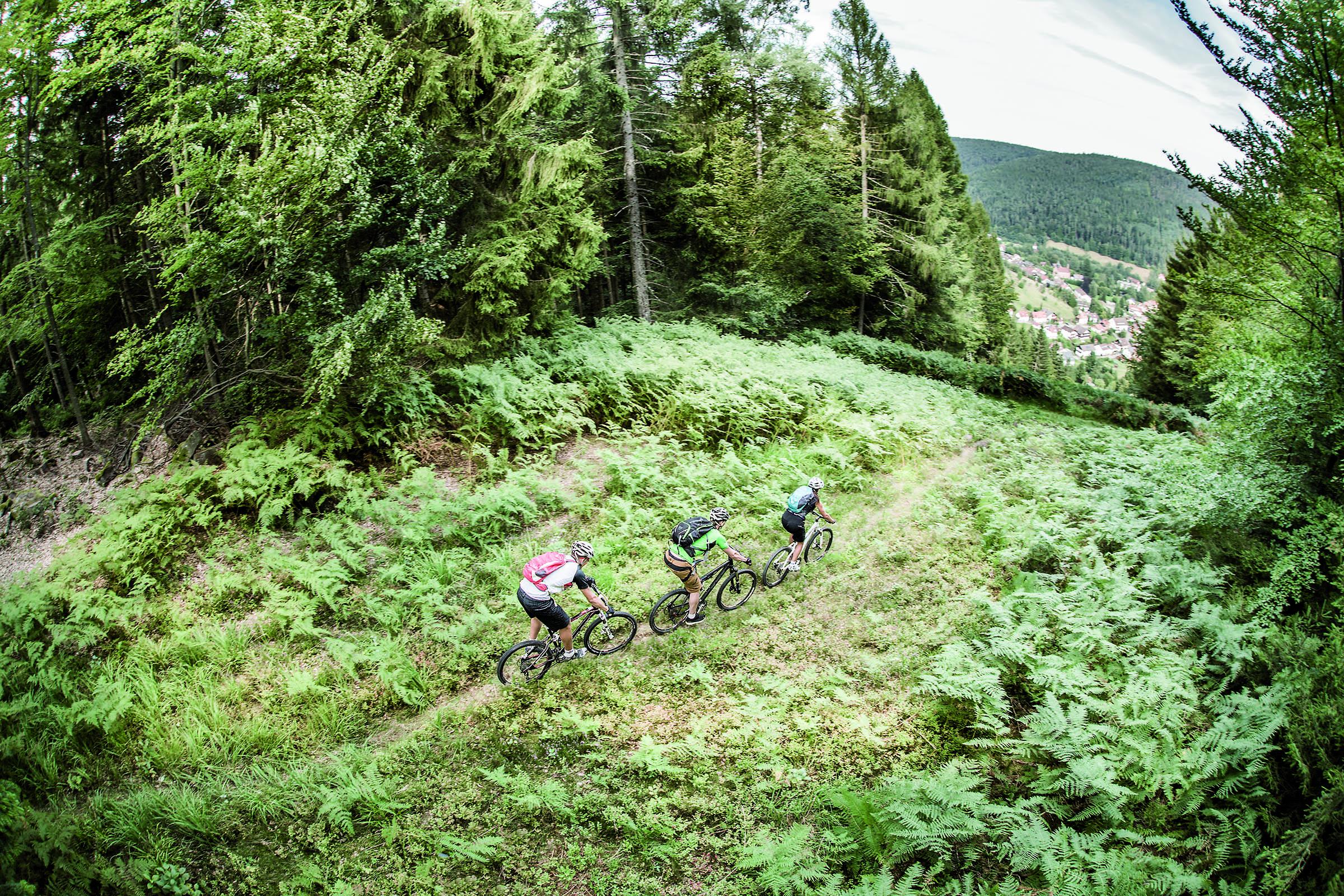beitune MTB Schwarzwald Singletrail-Wochenende