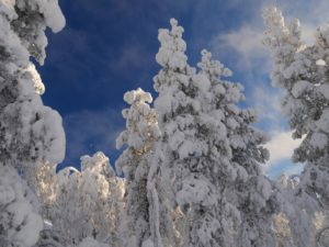 beitune Winterreise nach finnisch Lappland