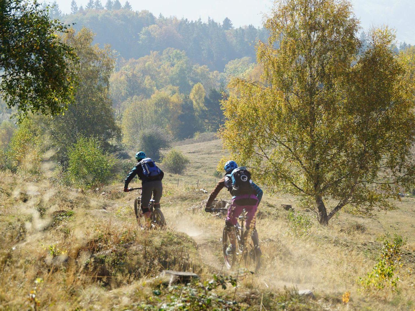 Naturbelassene Trails, tolle Abfahrten und viel Flow - in den Vogesen macht es einfach Spaß zu biken.