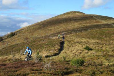 Schier endlose Wiesentrails schlängeln sich bei unseren Mountainbike-Touren durch die Vogesen den Hang hinab.
