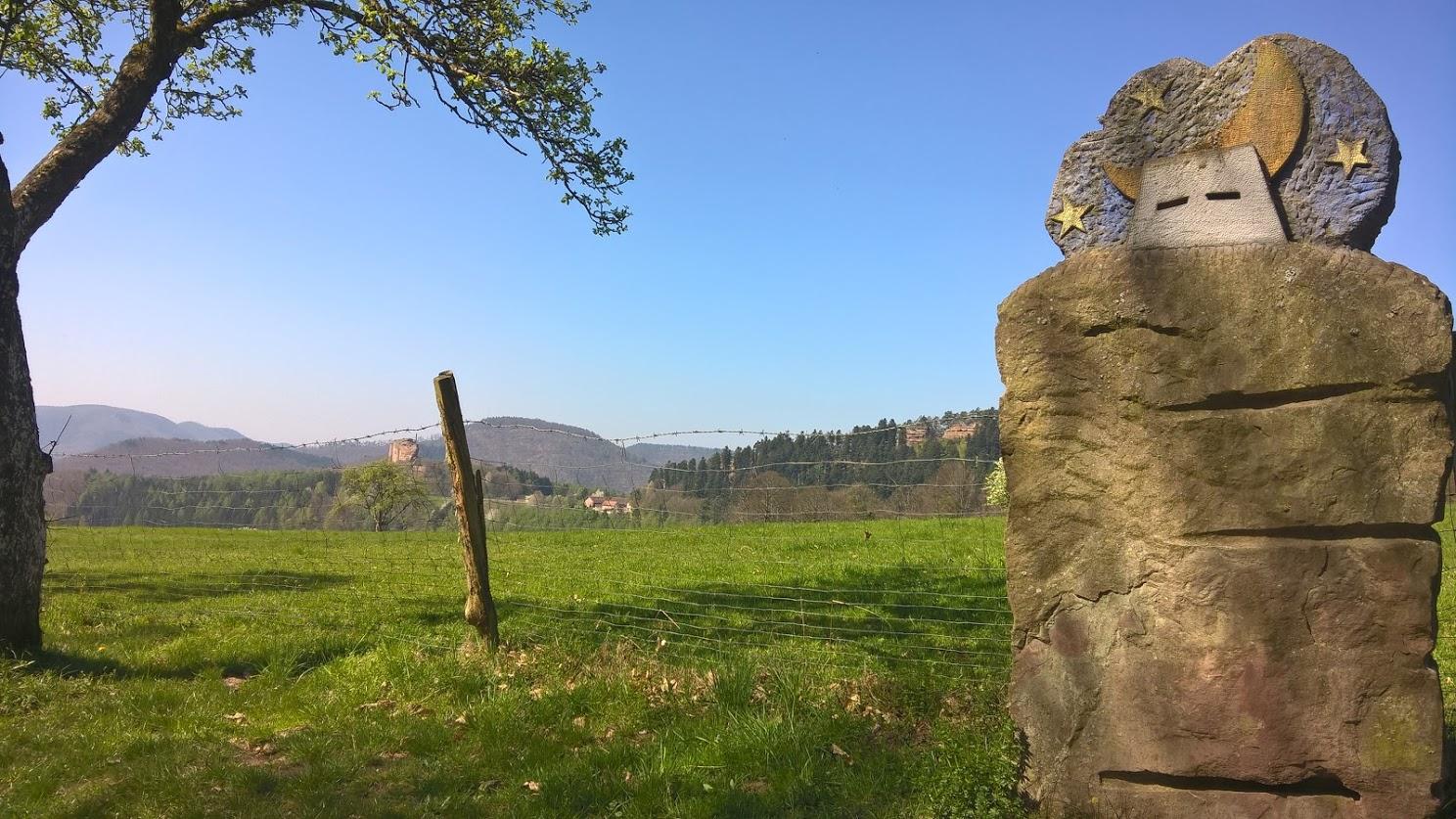 Mtb singletrails schwarzwald